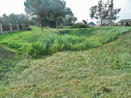Stare koryto rzeki Gorzyczanki. Zprawej strony droga asfaltowa Sandomierz – Skotniki. Stan na czerwiec 2014 r.